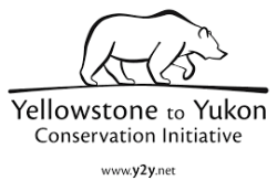 Yellowstone to Yukon Conservation Initiative